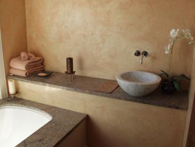 Guest bath detail
